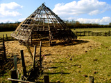 The framework for a reconstructed roundhouse - Cholderton Rare Breeds Farm, Hampshire